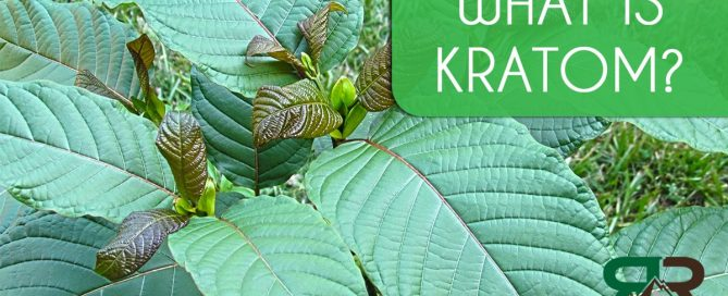 palm beach addiction help kratom