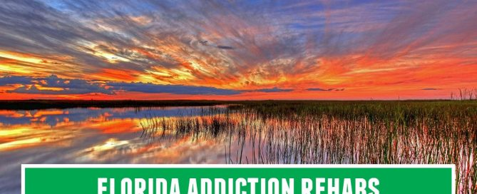 florida rehabs addiction